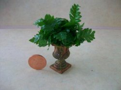 Fern in Caeser's Urn Brown