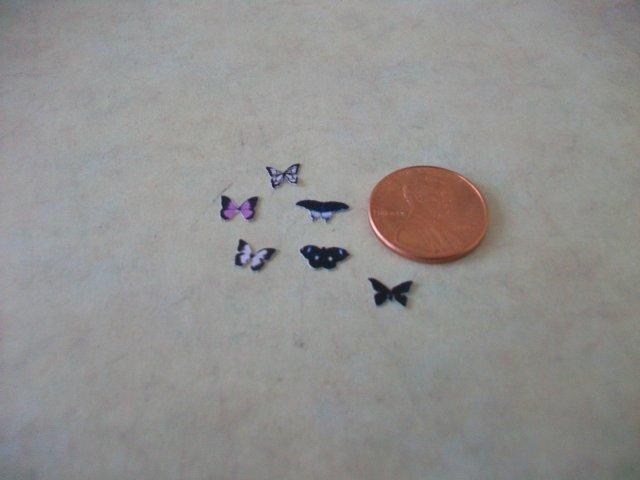 Black Butterfly set (6)