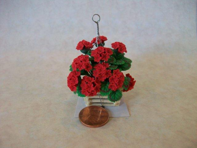 Red Geraniums in Hanging Plant