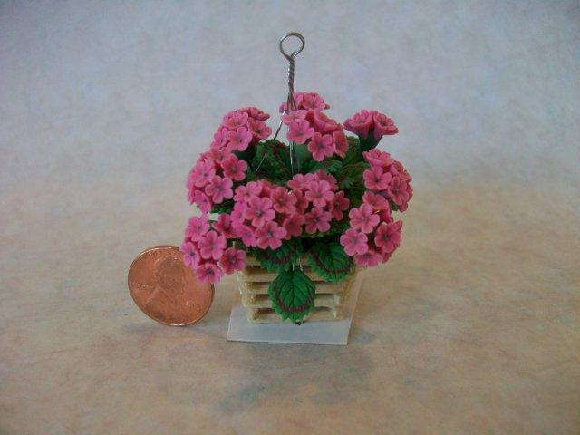 Pink Geraniums in Hanging Plan